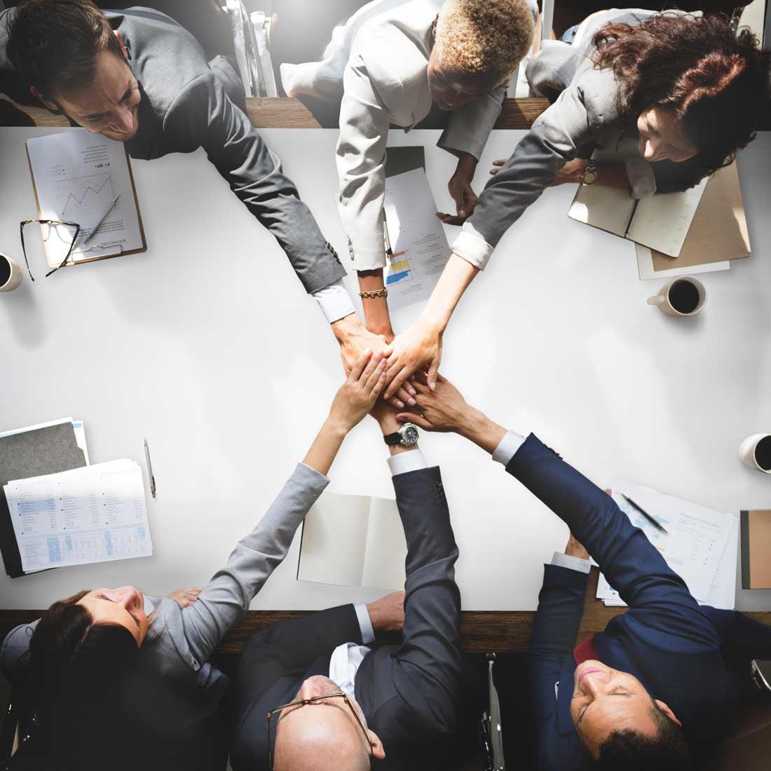 Yopa Advisor Business coaching
